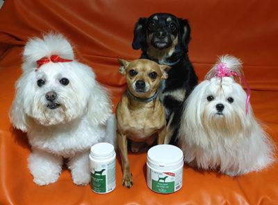 Cani con integratori