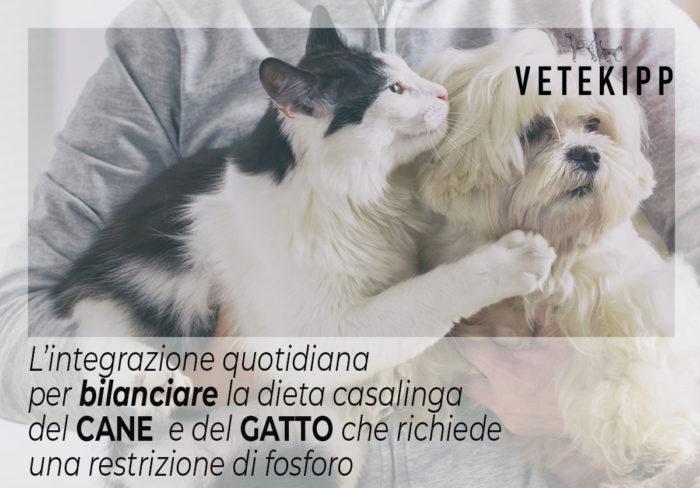 dieta per cane e gatto
