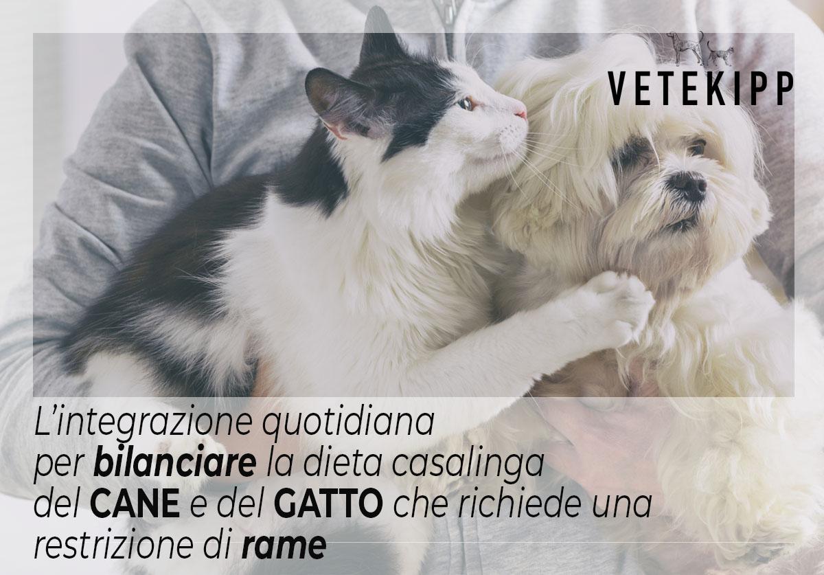 dieta casalinga per cane e gatto